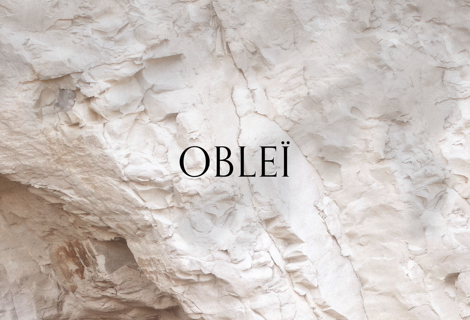 Oblei_skinfood3Artboard-1